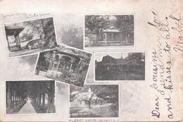 Alte  AK   SHARON  SPRINGS / New York / USA   - Versch. Ansichten -  Gelaufen 1902 - Other