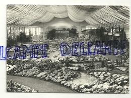 Floralies Gantoises. Gentse Floralien. 1965. Echte Foto. Edition Lander. Eupen - Fleurs, Plantes & Arbres