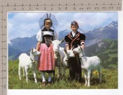 Heidiland - Chèvre / Ziege / Goat / Capra - Animaux & Faune