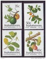 D101225 Bophuthatswana 1991 South Africa EDDIBLE WILD FRUIT Trees MNH Set - Afrique Du Sud Afrika RSA Sudafrika - Bophuthatswana