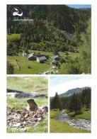 ANDORRA. Vall Del Madriu-Perafita-Claror. Patrimoine Mondial Unesco. (La Marmotte Des Pyrénées,Bordes De Ràmio,etc) - UNESCO