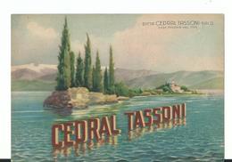 Cp Nv Cedral Tassoni - Salò - Perfetta Nv - Pubblicitari