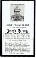 Sterbebild Joseph HERZOG - Pionier Bei 1. Bayr. Res.-Pion.-Komp. - Gevallen / Tombé Près De BAILLEUL (F) - 1915 - 1914-18