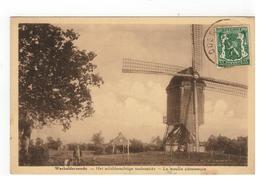 Wechelderzande.- Het Schilderachtige Molenzicht - Le Moulin Pittoresque - Lille