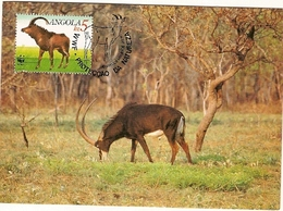Angola & Maxi Card, WWF Riesen-Rappenantilope, Hippotragus Niger Variani, Giant Sable, Malange 1990 (6867) - Angola