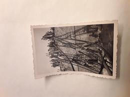 ORGINELE FOTO AFMETINGEN 8,50 CM OP 5,50 CM DEAUVILLE  1944  2DE GEURE - Deauville