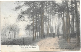 Orroir NA9: Un Coin Du Bois 1912 - Mont-de-l'Enclus