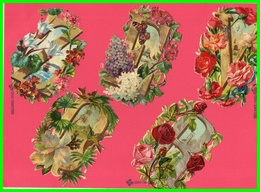 Cinq Chromos Découpis - Motif Lettres Fleuries.(recto Verso) - Victorian Die-cuts