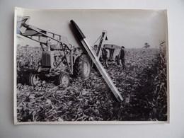 Photo Originale Machine Agricole BATTEUSE à MAÏS Tracteur VENDEUVRE Ets GIBOUIN à NANGIS 77 Agriculture Paysan Céréalier - Métiers