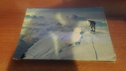 Cartolina:Catena Del Monte Rosa Viaggiata (a31) - Non Classificati