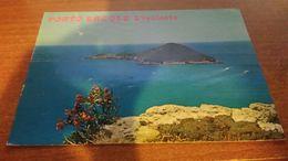 Cartolina: Porto Ercole E Isolotto Viaggiata (a31) - Non Classificati