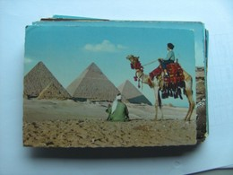 Egypte Egypt The Pyramids Of Giza Gizeh And Camel Driver - Gizeh