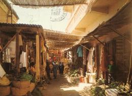TAROUDANT (Maroc) - Rue Commerçante Et Marchands D'épices - Cpm En Très Bon état - 2 Scans - Autres