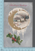 CPA - Christmas Greetings Gold Print Moon , Silver Print, Cover Brookbury P.Que 1909 On A USA Stamp - Christmas