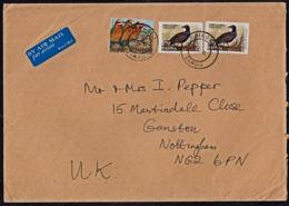 Ca0190 ZAMBIA 2004, SG 812B & 887 Birds On Chingola Cover To UK - Zambia (1965-...)