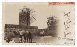 Petite CPM. Maroc. Bonne Année. Timbre. Cachet Rabat. Retour à L'envoyeur. Dim 110/70 Mm - Altri