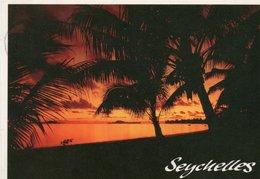 SEYCHELLES-  VIAGGIATA - Seychelles