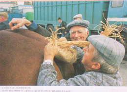 PLOUESCAT (29) - 10.1993 - CONCOURS AGRICOLE DE LA ST-LUC: PREPARATION DE LA QUEUE... - 400 EX. / ETAT NEUF - Chevaux