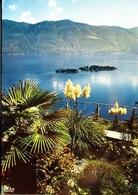 RONCO A/Ascona - TI Tessin