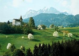 KRIENS Schloss Schauensee - LU Lucerne