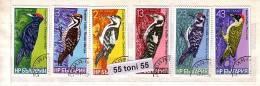 1978 BIRDS - Woodpecker 6 V.- Used/oblitere (O) BULGARIA / Bulgarie - Gebraucht