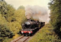 Chamin De Fer Touriqtique De La Vallée De La Doller - Train Dans La Forêt Entre Burnhaupt Et Guewenheim - Eisenbahnen