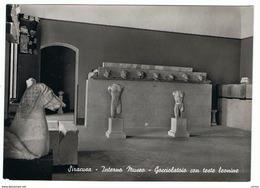 SIRACUSA:  INTERNO  MUSEO  -  GOCCIOLATOIO  CON  TESTE  LEONINE  -  FOTO  -  FG - Musei