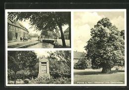 AK Pöhlde A. Harz, Denkmal, 1000jährige Linde, Gerichtslinde, Strassenpartie Mit Pferdewagen - Ohne Zuordnung