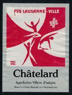Rare // Etiquette De Vin // Gymnastique // Villette 1994, FSG Lausanne-Ville - Etiquettes