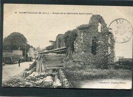 CPA - CHAMPTOCEAUX - Ruines De La Léproserie Saint-Lazare, Animé - Champtoceaux