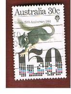 AUSTRALIA  - SG 960 -  1984 ANIMALS: POSSUM   -  USED - 1980-89 Elizabeth II