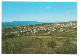 Cpsm Reillanne, Le Luberon- Vue Générale - France