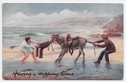 """Having A Ripping Time""  -  Tuck Oilette 9494 - Donkeys"