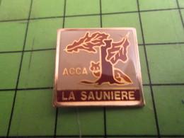 1012b Pin's Pins /  Belle Bet Rare / THEME ASSOCIATION : CHASSE ACCA LA SAUNIERE CHENE Pas Stéréo RENARD - Associations