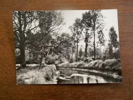Oude Foto - Kaart   NETE - Boord  Westerlo - Westerlo