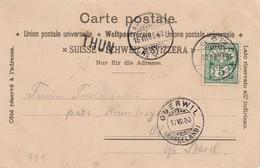 SUISSE1900 CARTE POSTALE CACHET LINEAIRE THUN - 1882-1906 Armarios, Helvetia De Pie & UPU