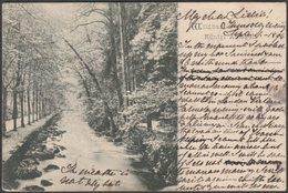 Königlichen Anlagen, Wildbad, 1894 - AK - Germany