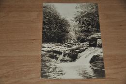6502-   LA HOEGNE, GOUFFRE DE L'HIPPOPOTAME - Jalhay