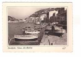Corse Bonifacio La Marine Port CPSM GF - Frankrijk