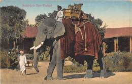 Inde / Ethnic - 213 - Maharaja's State Elephant - Belle Oblitération - Inde
