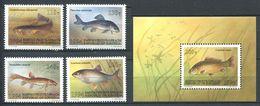 241 KIRGHIZSTAN 1994 - Yvert 24/27 BF 5 - Poisson - Neuf ** (MNH) Sans Trace De Charniere - Kirghizistan