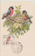 Tchécoslovaquie Carte Maximum Oiseaux 1959 Bouvreuils 1051 - Tchécoslovaquie
