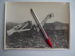 Photo Originale Publicité GIBOUIN TRACTEUR AGRICOLE FAUCHEUSE à MAÏS Remorque Région De NANGIS Agriculture Céréalier - Métiers