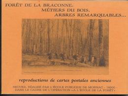RECUEIL  DE REPROS CPA -   FORET DE LA BRACONNE - METIERS DU BOIS - ARBRES REMARQUABLES - REALISE PAR ECOLE DE MORNAC - France
