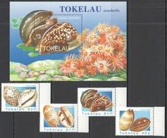 W367 1996 TOKELAU MARINE LIFE SEASHELLS 1SET+1BL MNH - Coneshells