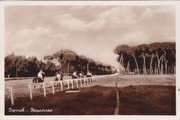 LIBAN LEBANON 1952 CARTE POSTALE BEYROUTH - HIPPODROME HORSES RACING COURSE - Grand Liban (1924-1945)