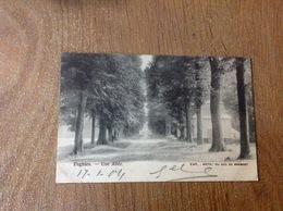 Enghien Une Allée - Cartes Postales