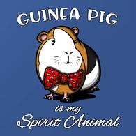 @@@ MAGNET - Guinea Pig - Publicitaires
