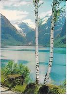 Loenvatnet Nordfiord - Norvegia