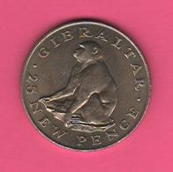 Gibilterra Gibraltair 25 New Pence 1971 Scimmia Macaco Ape Singe - Gibraltar